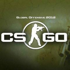 CS:GO|反恐精英2.0 中文版