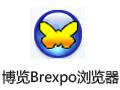 博览Brexpo浏览器 1.9