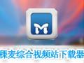 稞麦综合视频站下载器(xmlbar) 9.94