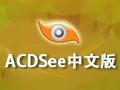 ACDSee 3.1美化版