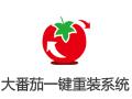 大番茄一键重装系统 2.0.3