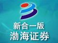 渤海证券新合一版资金流向数据 9.1
