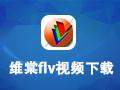 维棠视频下载器 2.1.4
