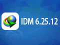 IDM 6.31.9