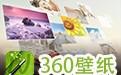 360壁纸(小鸟壁纸) 3.1121.1465